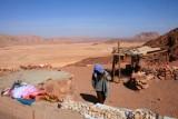 9374  Bedouin roadside stall.jpg