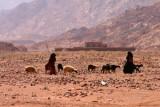 9382 Bedouin goat herders.jpg