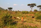 2632 Maasai boy.jpg