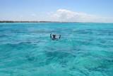 7118a Paul Snorkling Zanzibar.jpg