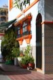 7772 Cat House San Luis.jpg