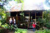 10021 Rainforest house.jpg