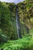Waimoku falls, Hana 31670
