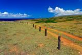 moomomi dunes 02755