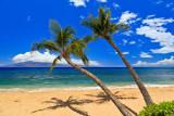 Kaanapali Beach 28359