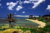 Murphy's Beach - Beautiful Hawaii Day