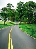 Winding Kula Road