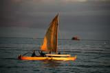 Sailing 10251