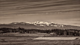 Mt Arrowsmith