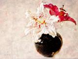 Oriental Lilies in Texture