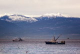 Fishing Boats and Mountains