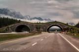 Wildlife Overpass Banff