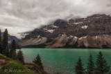 Bow Lake and Bow Glacier