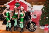 Alefs Naughty Elfs