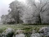 shropshire frost (stiperstones)