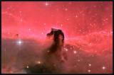 horsehead nebula zoomed
