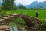 The Farmer and his Ox, Yangshuo