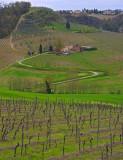 Outside San Gimignano, Tuscany