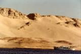 Fantaea 1 on Sinai Shoreline_resize.jpg