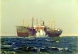 Lara on Jackson Reef Tiran Straits_resize.jpg