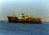 Louellia on Gordon Reef Tiran Straits_resize.jpg