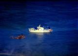 Sudan Shipwreck Hi_resize.jpg