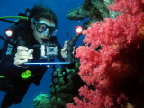 Recent Dive Testing Red Sea