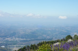 View - Palomar Mtn. State Park
