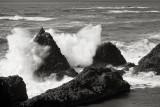 Seal Rock 1
