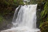 McDowell Falls 1