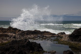 Oregon coast 4