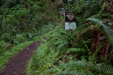 Cooks Ridge Trail border