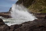 Oregon coast 6