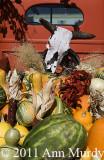 Colors of fall in Santa Fe