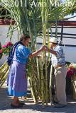 Buying sugar cane