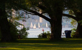 A Peek from Centre Island