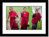 Young Monks at Rinpung Dzong