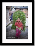 Typical Way of Carrying Load in Nepal