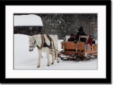 In a One-Horse Open Sleigh