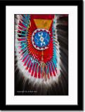 Colorful Feather Arrangement