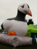 Bouncy Puffin