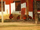 Repainting the monastery.jpg