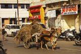 Street in Jamnagar.jpg