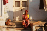 Ahmedabad woman and dog.jpg