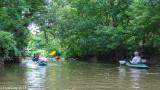 Irondequoit Creek paddle trip