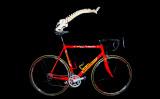 full bike +back