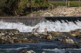 River Sava (IMG_9393ok.jpg)