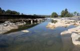 River Sava (IMG_9447ok.jpg)