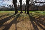 Arboretum Volčji potok (IMG_6963m.jpg