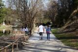 Spring is here (IMG_7069m.jpg)